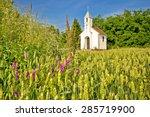 Catholic Chapel In Rural...