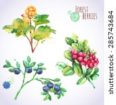 watercolor set of forest... | Shutterstock .eps vector #285743684