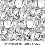 vector seamless pattern with... | Shutterstock .eps vector #285757223