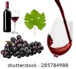 grape leaf  leaf  single object. | Shutterstock . vector #285784988