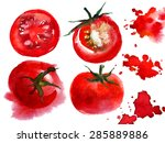 red tomato watercolor food... | Shutterstock . vector #285889886