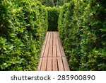 wooden passage through tree... | Shutterstock . vector #285900890