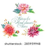 set of floral elements for... | Shutterstock .eps vector #285959948