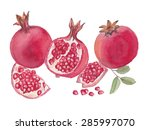 pomegranate group watercolor... | Shutterstock .eps vector #285997070