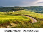 Road Between Green Fields In...