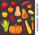 set of fresh vegetables. vector ... | Shutterstock .eps vector #286165724