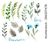 set of flowers painted in...   Shutterstock . vector #286207478