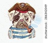 illustration of pirate pug dog... | Shutterstock .eps vector #286342049
