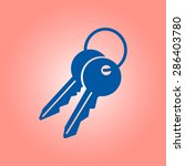 key icon. lock symbol. security ... | Shutterstock .eps vector #286403780