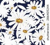 vector illustration of floral... | Shutterstock .eps vector #286405244