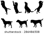 vector silhouette of a dog on a ...
