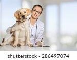Stock photo veterinarian vet pet 286497074