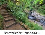 Wood Stair Steps In Sweet Cree...