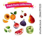 vector set of watercolor fruits ... | Shutterstock .eps vector #286659320