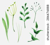 set of watercolor herbs and... | Shutterstock .eps vector #286676888