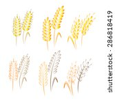 agriculture | Shutterstock .eps vector #286818419