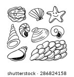 sea shells doodled icons ... | Shutterstock .eps vector #286824158