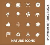 nature icons  vector   Shutterstock .eps vector #286846526