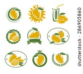 mango labels and elements set.... | Shutterstock .eps vector #286905860