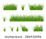 fragment of a beautiful green... | Shutterstock .eps vector #286910096