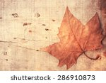 autumn leaves | Shutterstock . vector #286910873