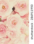 roses background | Shutterstock . vector #286911950