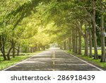 Landscape Of Straight Road...