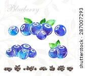 blueberry icons set with... | Shutterstock .eps vector #287007293