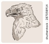 eagle sketch. vector... | Shutterstock .eps vector #287058914