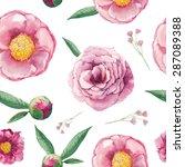 watercolor peony  wild flowers... | Shutterstock .eps vector #287089388