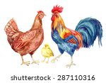 Watercolor Chicken Family   He...
