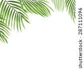palm leaves vector background.    Shutterstock .eps vector #287111096
