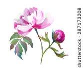 watercolor illustration peonies | Shutterstock . vector #287173208