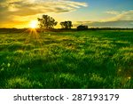 autumn in the afternoon at... | Shutterstock . vector #287193179