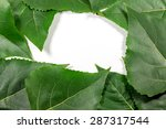 green leaves isolated on white. | Shutterstock . vector #287317544