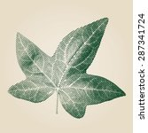 ivy leaf vector illustration. | Shutterstock .eps vector #287341724