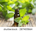 natural mint essential oil in a ... | Shutterstock . vector #287405864