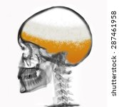 man thinking about beer   all... | Shutterstock . vector #287461958