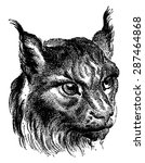 cat  vintage engraved... | Shutterstock .eps vector #287464868