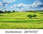 Green Grass Field  Landscape...