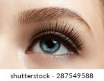 close up of make up eye with... | Shutterstock . vector #287549588