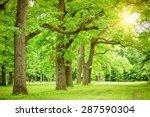 summer landscape with forest...   Shutterstock . vector #287590304