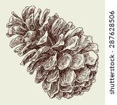 fir cone   Shutterstock .eps vector #287628506