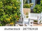 ripe lemons hanging on a tree | Shutterstock . vector #287782418