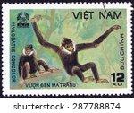 vietnam   circa 1982  a stamp... | Shutterstock . vector #287788874