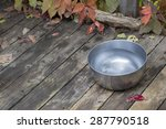 Metal Water Bowl For A Dog On...