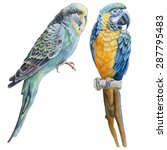 Watercolor Birds.  Blue...