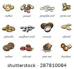 vector nuts icons set. food... | Shutterstock .eps vector #287810084