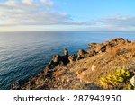 Dry Lava Coast Beach In The...