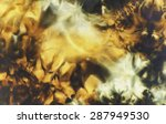 black and ocre with yelow... | Shutterstock . vector #287949530
